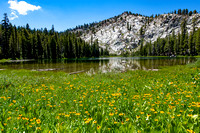 Lower Twin Lake and Flowers